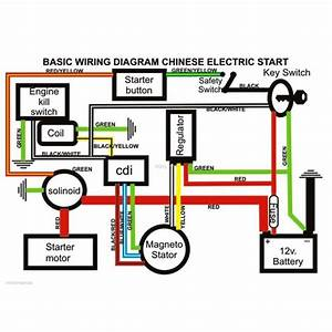 Buzz 50 Quad Wiring Diagram