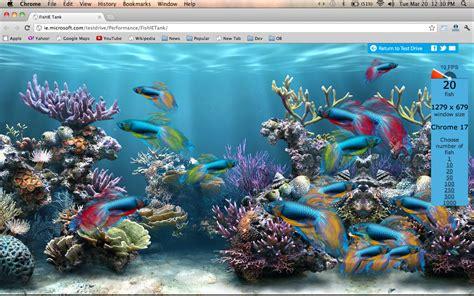 Animated Fish Tank Wallpaper - animated fish aquarium desktop wallpapers wallpapersafari