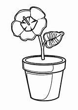 Pot Coloring Pages Coloringtop sketch template
