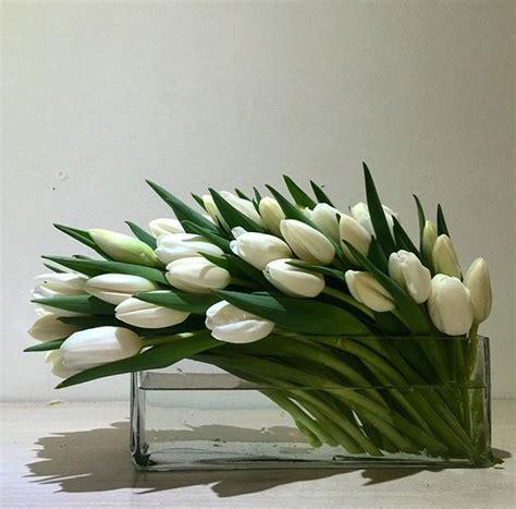 tulip tulips conte