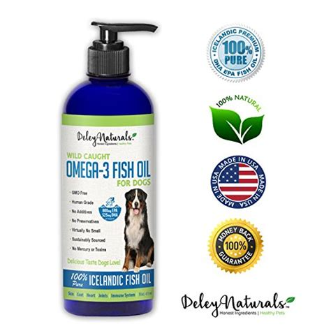 fish for dogs shedding 24 top supplements pets list products
