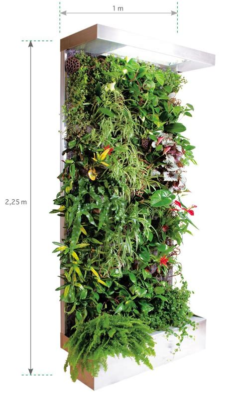 Mur Vegetal Interieur: