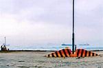 西環碼頭.變幻中的公共空間