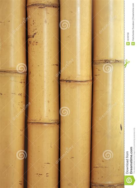 Plant Wall Decor by Bamboo Texture Stock Photo Image Of Traditional Stick