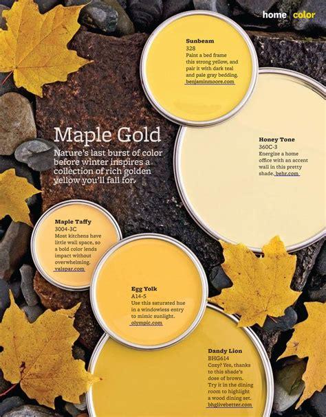 honey maple paint color imagine design 187 5 maple gold paint colors from better homes gardens