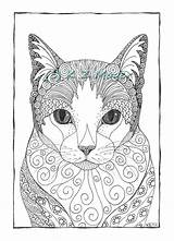 Coloring Cat Pages Adult Cats Patterns Zentangle Dessin Animal Chat Portraits Dog Pen Drawings Ink Adults Printable Drawing Various Styles sketch template