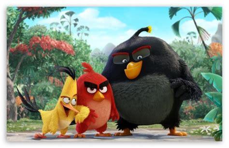 angry birds   ultra hd desktop background