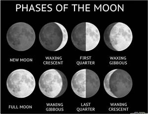 moon phases - tash's page