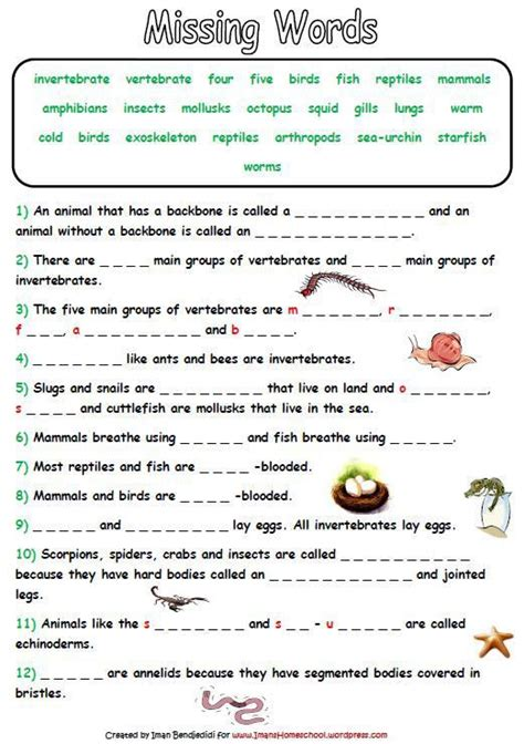 animal classification activity worksheets homeschool