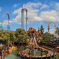 History of Knott's Berry Farm and the Boysenberry - Knott ...
