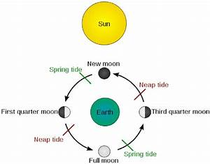 Schematic Chart About The Spring