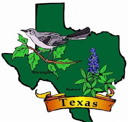 Texas State Clipart Bluebonnet Clip Discrimination Flower