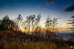 Beautiful Autumn Landscape Background - High-quality Free ...