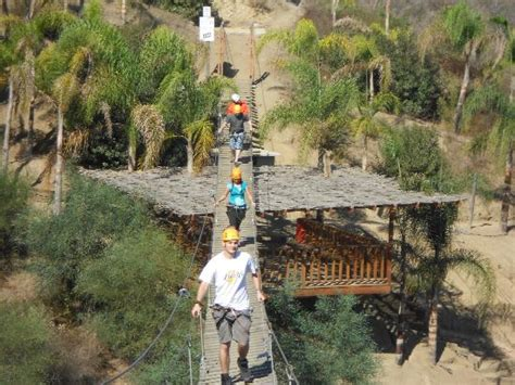 las canadas canopy tour bridge picture of las canadas canopy tour ensenada