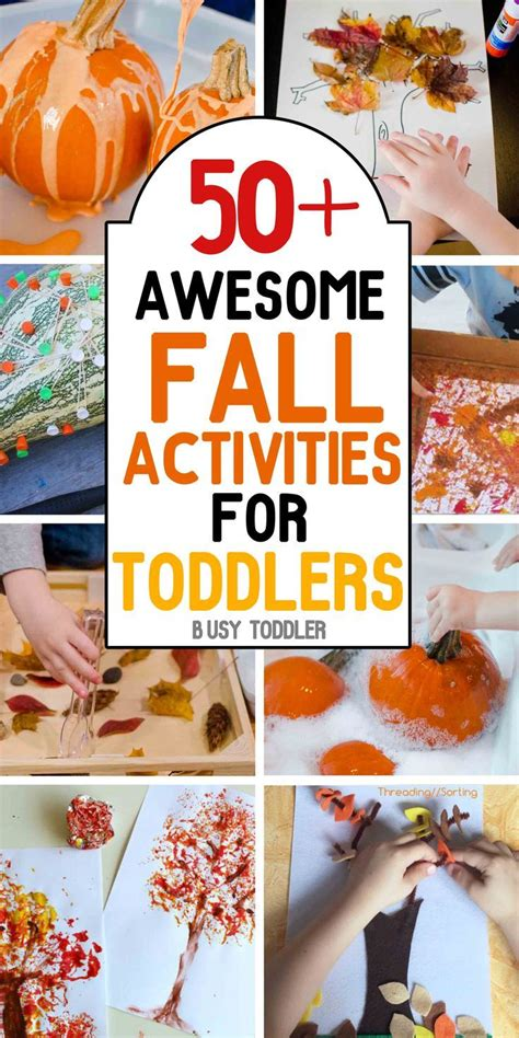 17 best images about seasonal fall activities on 813 | f74295067d832dd6cef8c41b58c61f3a