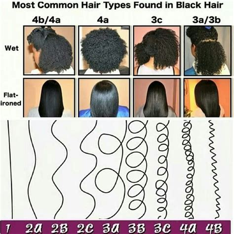 Most common hair types in black hair Natural hair types