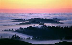 Beautiful photos of fog over california landscapes for Marin county fog