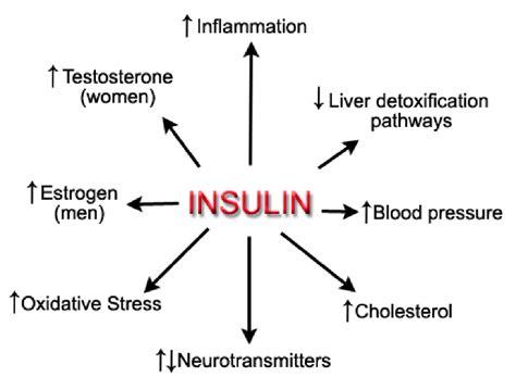 managing blood sugar insulin resistance  hypoglycemia