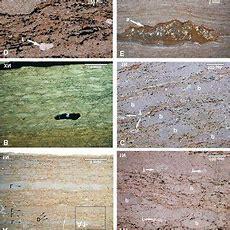 (pdf) The Sokoliska Limestone, A New Regional Marker