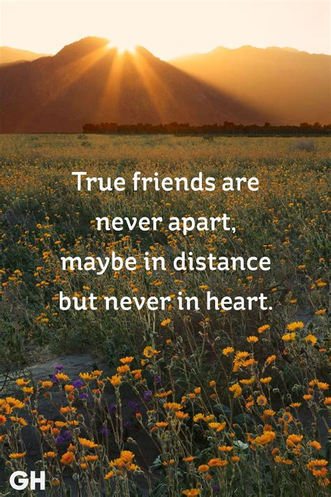 20 Short Friendship Quotes to Share With Your Best Friend ...