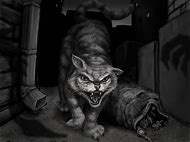 Evil Cat Drawing