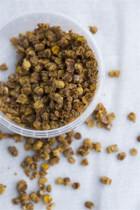 bee bread nordic food lab