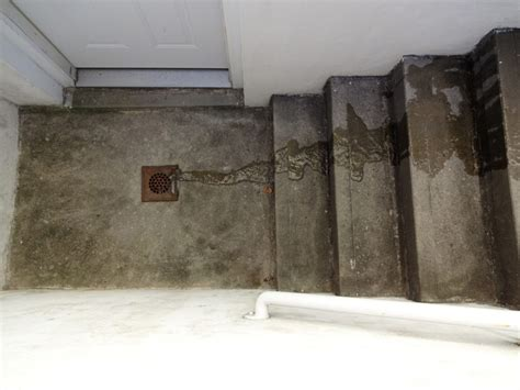 Basement Floor Drain Clogged by Blocked Outside Drain Causes Prevention And Cures