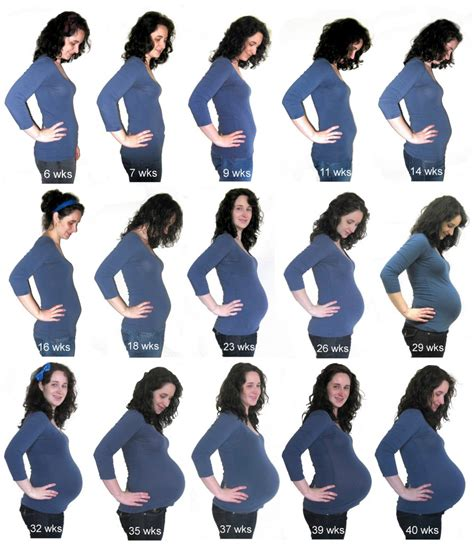 Janin 12 Minggu Preggo Meggo My Baby Bump Recap Diy Maternity