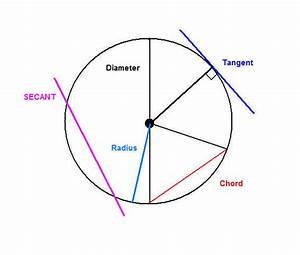 Dark Circles Diagram