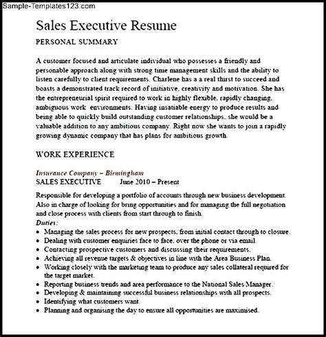 executive summary for sales resume sales executive summary resume