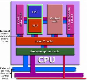 The Central Processing Unit  Cpu
