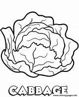 Cabbage Coloring Vegetable Printable Vegetables Repolho Colorir Verde Kale Children Desenhos Imprimir Colorironline Template Doghousemusic Desenho sketch template