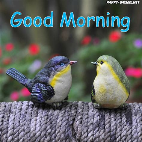20 good morning wishes with bird pictures happy wishes