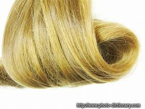 Hair swirl photo picture definition at dictionary