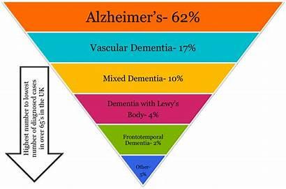 Dementia Types Different Alzheimer Brain There