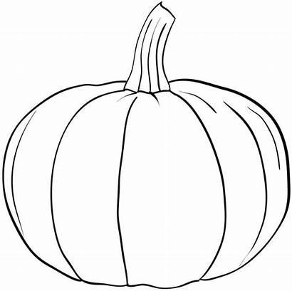 Coloring Pumpkin Printable Pdf Outline