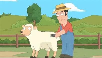 Gifs Farmers Gfycat Farmer Drop Farm Sheep