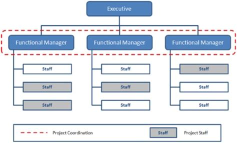 organizational structure types  project managers