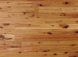 australian cypress 3 4 x 3 1 4 quot exotic solid hardwood