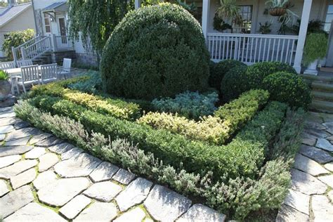 Best Shrubs For Front Of House  Shrubs In Front Of Home