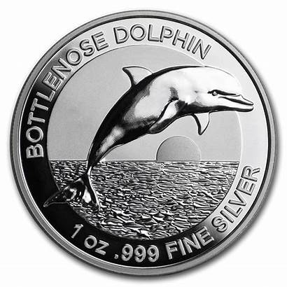 Coin Proof Dolphin Silver Australia Bottlenose Relief