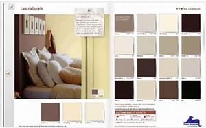 Quelle Couleur De Peinture Pour Une Chambre : associer couleur chambre et peinture facilement deco cool ~ Dallasstarsshop.com Idées de Décoration