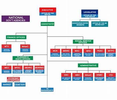 Organizational Chart Departments