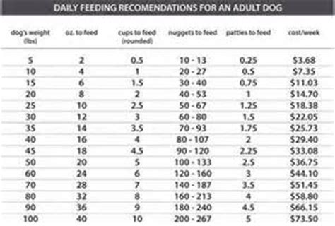 sheltie weight chart yahoo image search results weight