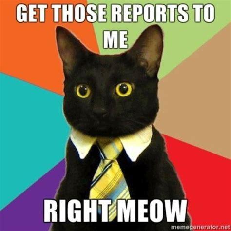 Buisness Cat Meme - image 100097 business cat know your meme