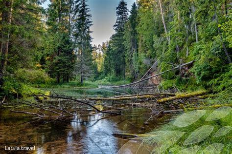 Cīrulīšu dabas takas | Latvia Travel