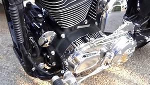 04 Harley Sportster Crank Shaft Position Sensor Location