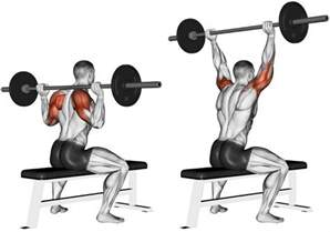 No Bench Chest Workout by Shoulders Workouts Archives Mn Prime