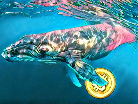 The cointelegraph on latest cryptocurrency news today! Crypto Whale Trend in the last 24 hours | Forex-News