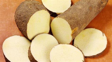 cuisiner la patate douce au four comment cuisiner que cuisiner et comment le cuisiner